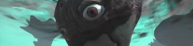 Nightmare Rift Banner