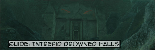 guideintrepiddrownedhalls_banner