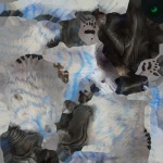 3.0 Datamine Wolf Skin