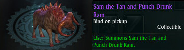 Sam the Tan and Punch Drunk Ram
