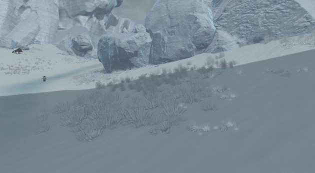 Less Barren Tarken Glacier