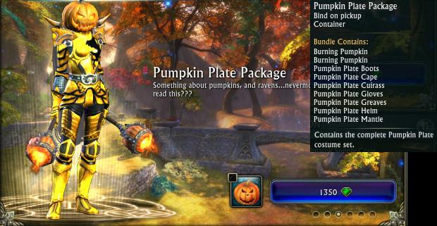 Pumpkin Plate Package