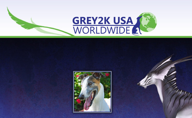 RIFT Grey2k USA Worldwide Great Hound Feature Image