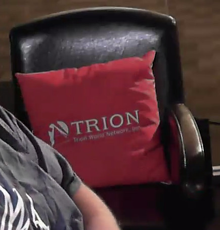 Trion Pillow