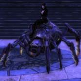 Mount Spider